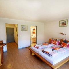 Апартаменты Auhof Apartments комната для гостей фото 2