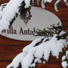 Отель Вилла Antałówka Польша, Закопане - отзывы, цены и фото номеров - забронировать отель Вилла Antałówka онлайн развлечения