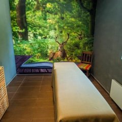 Отель Snezhanka Болгария, Пампорово - отзывы, цены и фото номеров - забронировать отель Snezhanka онлайн фото 4