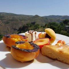 Отель Garnitoun Армения, Лусарат - отзывы, цены и фото номеров - забронировать отель Garnitoun онлайн питание фото 2