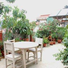 Отель Holyland Guest House Непал, Катманду - отзывы, цены и фото номеров - забронировать отель Holyland Guest House онлайн фото 9