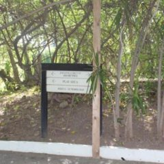 The Jamaica Pegasus Hotel спортивное сооружение