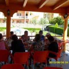 Отель Globi Албания, Шенджин - отзывы, цены и фото номеров - забронировать отель Globi онлайн