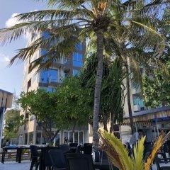 Отель Wavefrontinn Мальдивы, Мале - отзывы, цены и фото номеров - забронировать отель Wavefrontinn онлайн питание