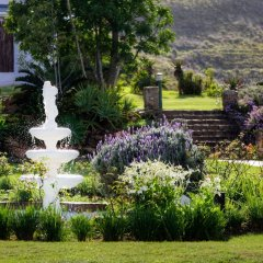 Отель Zuurberg Mountain Village Южная Африка, Аддо - отзывы, цены и фото номеров - забронировать отель Zuurberg Mountain Village онлайн фото 5
