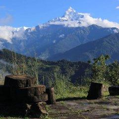 Отель Himalayan Deurali Resort Непал, Лехнат - отзывы, цены и фото номеров - забронировать отель Himalayan Deurali Resort онлайн фото 16