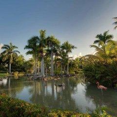 Отель Melia Caribe Tropical - Все включено Пунта Кана приотельная территория