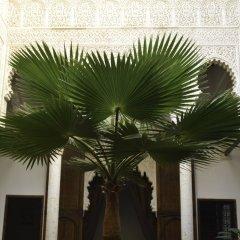 Отель Riad Azahra Марокко, Рабат - отзывы, цены и фото номеров - забронировать отель Riad Azahra онлайн фото 3
