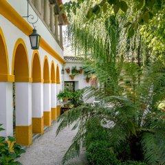 Отель Casa da Azenha Ламего фото 9