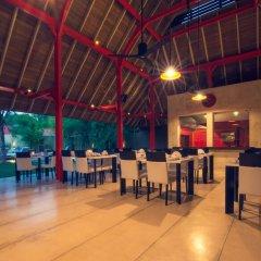 Отель Pledge 3 Шри-Ланка, Негомбо - отзывы, цены и фото номеров - забронировать отель Pledge 3 онлайн фото 15