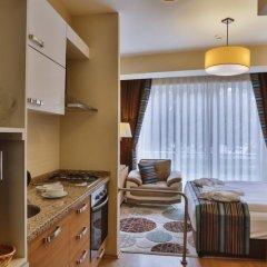 Manesol Suites Golden Horn Турция, Стамбул - отзывы, цены и фото номеров - забронировать отель Manesol Suites Golden Horn онлайн удобства в номере фото 2