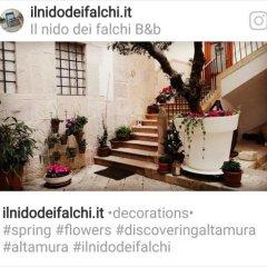 Отель Il Nido dei Falchi B&B Альтамура городской автобус