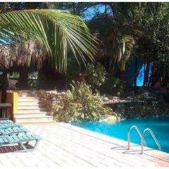 Отель Comfort Inn Palenque Maya Tucán бассейн