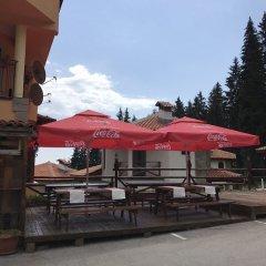 Отель Aparthotel Forest Glade Болгария, Чепеларе - отзывы, цены и фото номеров - забронировать отель Aparthotel Forest Glade онлайн фото 2
