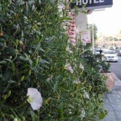 Отель Cleopetra Hotel Иордания, Вади-Муса - отзывы, цены и фото номеров - забронировать отель Cleopetra Hotel онлайн фото 3