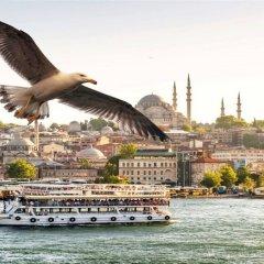 Old City Family Hotel Турция, Стамбул - отзывы, цены и фото номеров - забронировать отель Old City Family Hotel онлайн приотельная территория