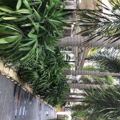 South Beach Plaza Hotel фото 12
