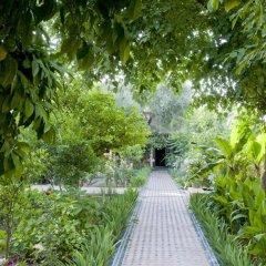 Отель Le Jardin Des Biehn Марокко, Фес - отзывы, цены и фото номеров - забронировать отель Le Jardin Des Biehn онлайн фото 11