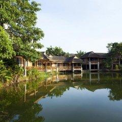 Отель Phuket Chaba Hotel Таиланд, Пхукет - 1 отзыв об отеле, цены и фото номеров - забронировать отель Phuket Chaba Hotel онлайн приотельная территория фото 2