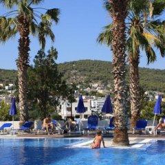 Отель Blue Fountain Греция, Эгина - отзывы, цены и фото номеров - забронировать отель Blue Fountain онлайн бассейн фото 3