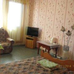 Гостиница Zhemchuzhina в Артыбаше отзывы, цены и фото номеров - забронировать гостиницу Zhemchuzhina онлайн Артыбаш удобства в номере фото 2