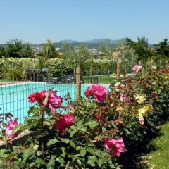 Отель Locanda dei Rii Манерба-дель-Гарда бассейн фото 2