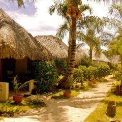 Отель Village Temanuata Французская Полинезия, Бора-Бора - отзывы, цены и фото номеров - забронировать отель Village Temanuata онлайн фото 14
