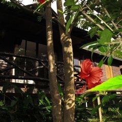 Отель Mook Lanta Boutique Resort And Spa Ланта фото 8