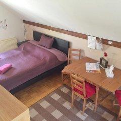 Отель Book-A-Room City Apartment Salzburg Австрия, Зальцбург - отзывы, цены и фото номеров - забронировать отель Book-A-Room City Apartment Salzburg онлайн комната для гостей фото 3