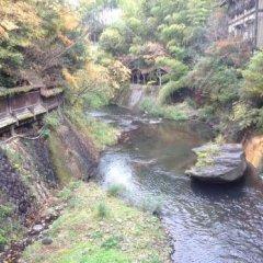 Отель Ryokan Fujimoto Минамиогуни приотельная территория фото 2