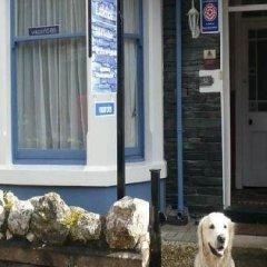 Отель Littlefield B&B с домашними животными