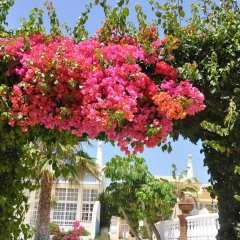 Отель Ponta Grande Sao Rafael Resort Португалия, Албуфейра - отзывы, цены и фото номеров - забронировать отель Ponta Grande Sao Rafael Resort онлайн фото 12