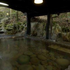Отель Shinmeikan Япония, Минамиогуни - отзывы, цены и фото номеров - забронировать отель Shinmeikan онлайн бассейн фото 2