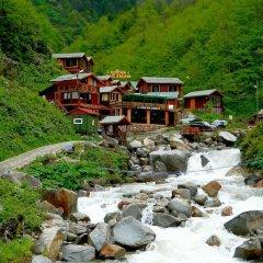 Ayder Elizan Hotel фото 10