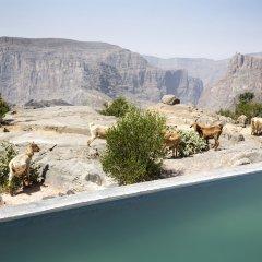 Отель Anantara Al Jabal Al Akhdar Resort Оман, Низва - отзывы, цены и фото номеров - забронировать отель Anantara Al Jabal Al Akhdar Resort онлайн фото 14