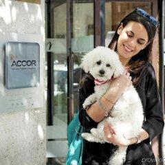 Отель Mercure Roma Piazza Bologna Италия, Рим - 1 отзыв об отеле, цены и фото номеров - забронировать отель Mercure Roma Piazza Bologna онлайн с домашними животными