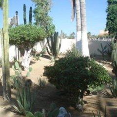 Отель Park Royal Homestay Los Cabos. Мексика, Сан-Хосе-дель-Кабо - отзывы, цены и фото номеров - забронировать отель Park Royal Homestay Los Cabos. онлайн фото 15