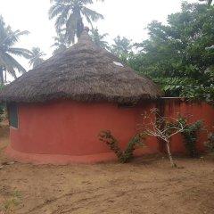 Отель Stumble Inn Eco Lodge Гана, Шама - отзывы, цены и фото номеров - забронировать отель Stumble Inn Eco Lodge онлайн фото 3