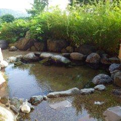 Отель Gokan Resort Ushidake Тояма бассейн фото 2