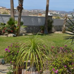 Отель Casa de Las Flores 3 Bedrooms 3 Bathrooms Villa Мексика, Сан-Хосе-дель-Кабо - отзывы, цены и фото номеров - забронировать отель Casa de Las Flores 3 Bedrooms 3 Bathrooms Villa онлайн