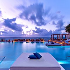 The Retreat Collection at 1 Hotel South Beach с домашними животными