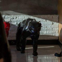 Отель Art Mansion Patong с домашними животными