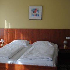 Hotel Der Tannenbaum комната для гостей фото 3
