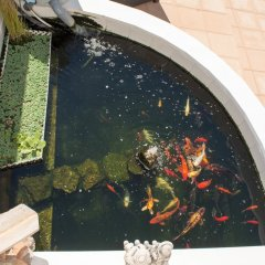 Отель Casa Lanjaron B&B бассейн фото 2