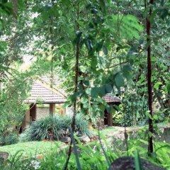 Отель Sigiriya Village фото 13