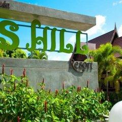 Отель P.S Hill Resort детские мероприятия