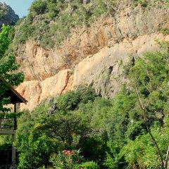 Гостевой Дом Dionysos Lodge фото 3