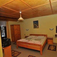 Отель Family Hotel Santo Bansko Болгария, Банско - отзывы, цены и фото номеров - забронировать отель Family Hotel Santo Bansko онлайн детские мероприятия
