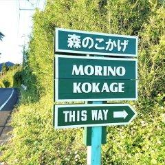 Отель Cottage Morinokokage Япония, Якусима - отзывы, цены и фото номеров - забронировать отель Cottage Morinokokage онлайн фото 15