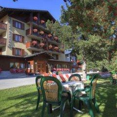 Hotel Alpina Пинцоло фото 2